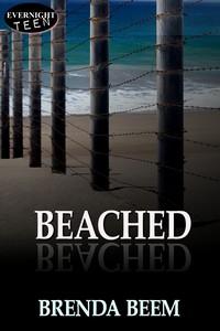 beached1s.jpg