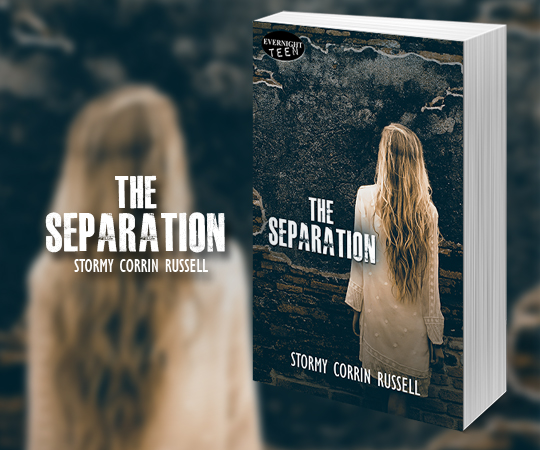 the-separation-evernightpublishing-jayaheer2016-evernightbanner.jpg