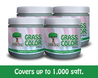 Grass Color: Fab Four-Pack