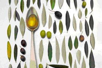time-olive.jpg