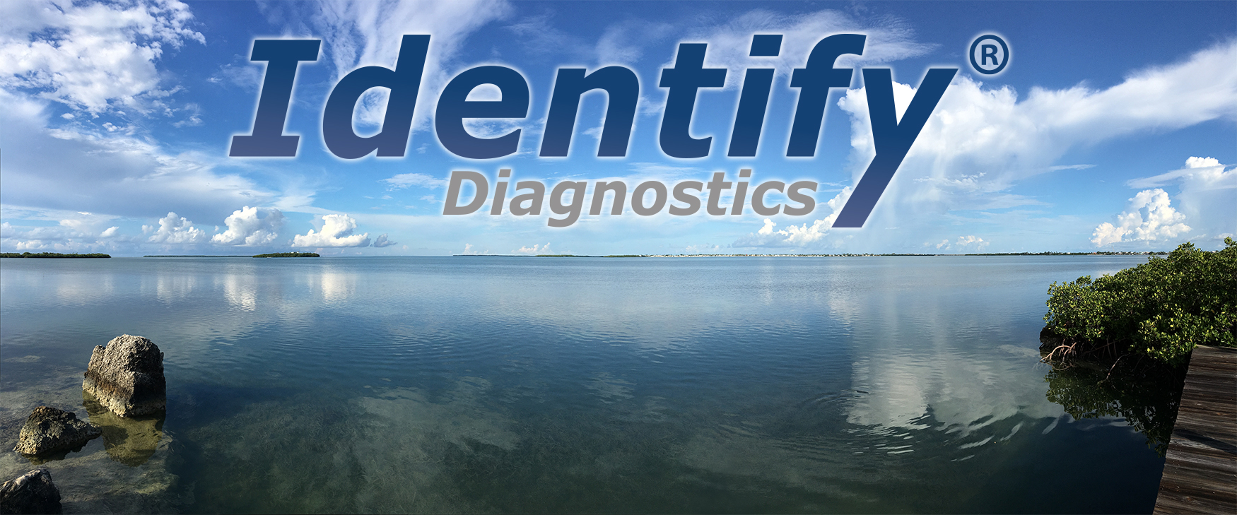 Identify Diagnostics Drug Test Cups - CLIA Waived