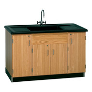 Diversified 3303K Science Lab Clean Up Sink