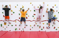 Everlast Climbing ECDISCDE40PKG2MATS High Discovery Dry Erase Wall 8x40 Package