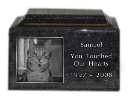 Engraved Photo Pet Urn in Granite