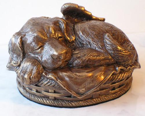 Dog Cremation Urn - Bronze