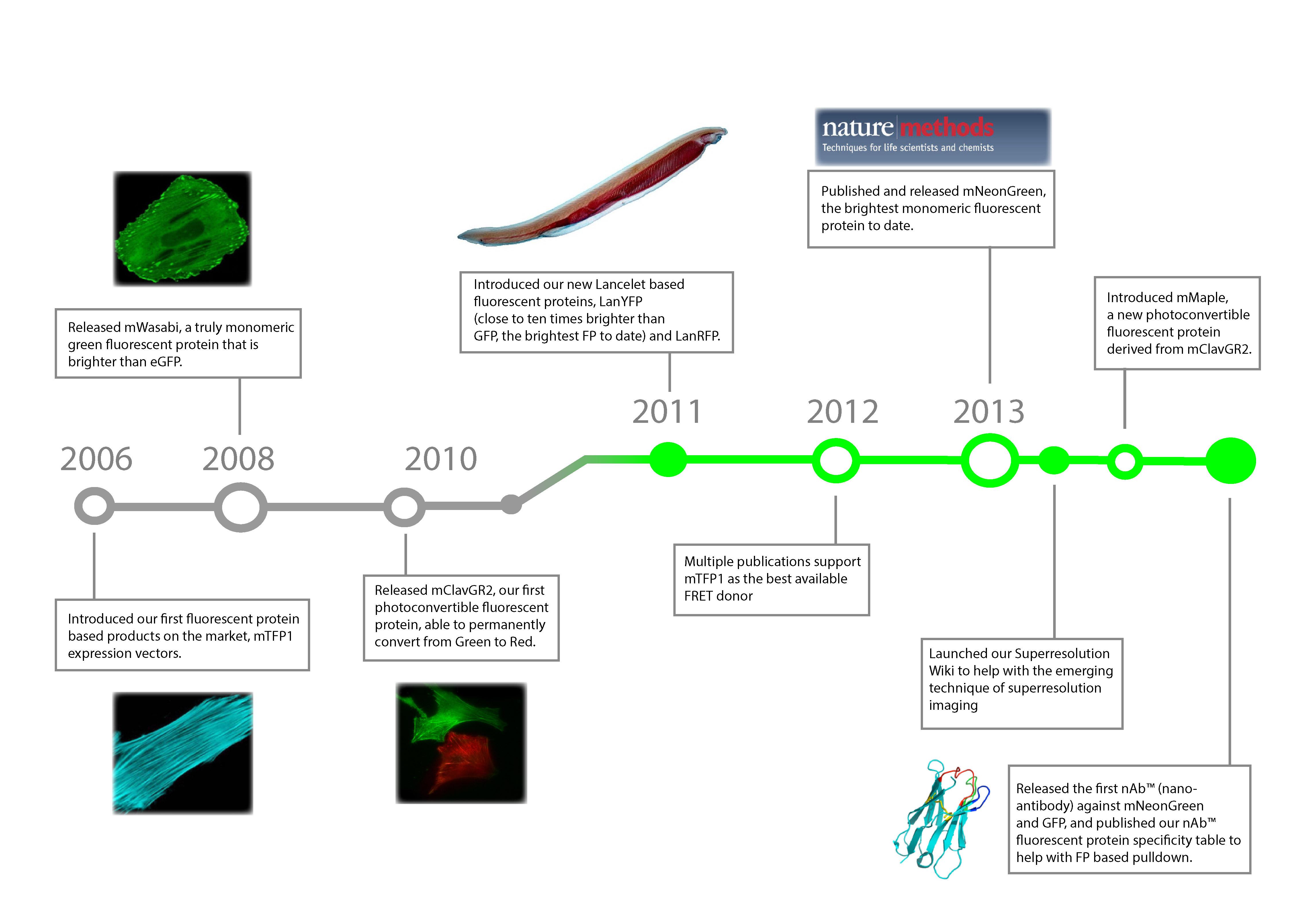 timeline-fp-01.jpg