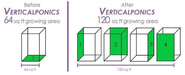 verticalponics-sqf-01-buddha.jpg