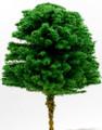 Scale Model Acacia Tree 1:200