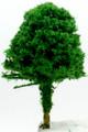 Scale Model Acacia Tree 1:400