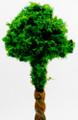 Scale Model Acacia Tree 1:1000