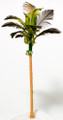 Scale Model Coconut Tree 1:100