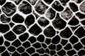 AMACO Friendly Plastic Modeling Material Cobra Silver/Black