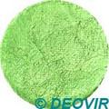 Golden Phoenix Face Paint 10g Pearly Light Green
