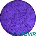 Golden Phoenix Face Paint 10g Pearly Purple