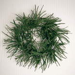 "26"" twister grass wreath deep green"