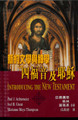 TD2607 新約文學與神學四福音及耶穌 INTRODUCING THE NEW TESTAMENT: Its Literature and Theology (Part I)