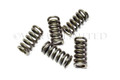 Clutch Spring CZ Wet Clutch Conversion (set 5)