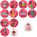 Baby Girl Band Monthly Onesie Stickers