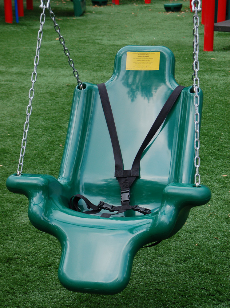Adaptive Swing Seat with Harness and Chain
