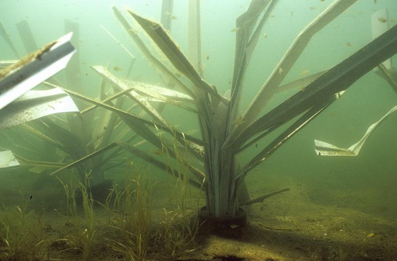 fishiding-structures-fhs-139.800.jpg