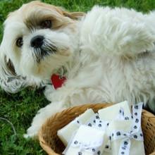 Bandit's Doggie Soap