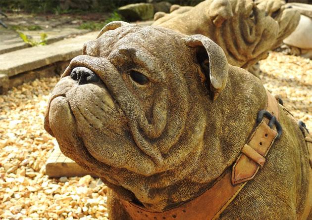 Solid Cast Garden Statue Stone British Bulldog