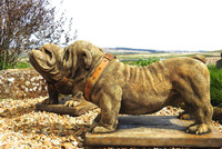 Pair of Standing British Bulldog Garden Ornaments hand made in the UK from Discount Garden Statues