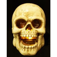 Large LED Lighted Skull