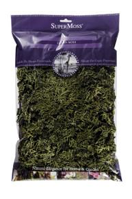 Super Moss Lichen Parmelia in Chartreuse  #21511SM