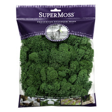 Super Moss Preserved Reindeer Moss in Forest Green  #21729SM