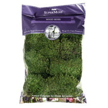 Super Moss Preserved Mood Moss in Natural Green  #21539SM