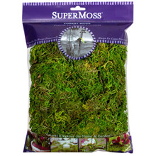 Super Moss Preserved Moss in Fresh Green  #25321SM