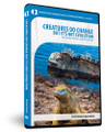 Creatures Do Change—But It's Not Evolution DVD