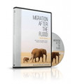Migration After the Flood DVD