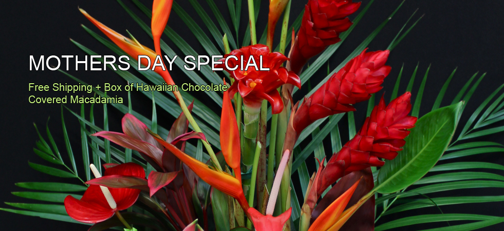 Our Mother's Day Special is prepared with the highest detail and care.