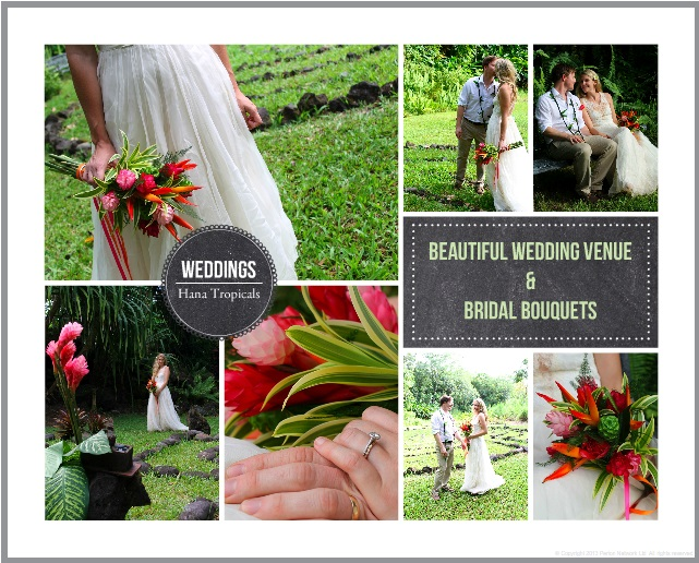 wedding-collage.jpg