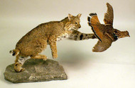 Taxidermy of a Lynx and a Grouse in Flight