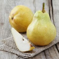 Pure Bartlett Pear Fragrance Oil