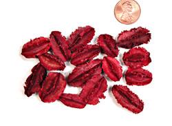 Arjun - Mini - Red