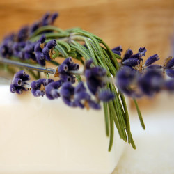 Lavender and Rosemary (all natural) Fragrance Oil