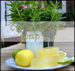 Citrus Blend Soap