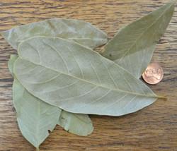 Amerith Leaves