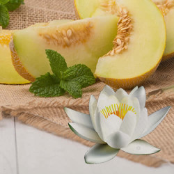Waterlily Melon Fragrance Oil