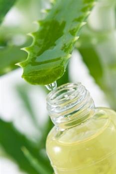aloe-vera-with-oil.jpg