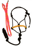 Halter and Rein Set (Pink and Yellow)