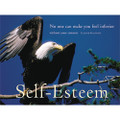The Eagle: Self-Esteem