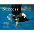 The Eagle: Success