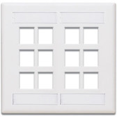 Leviton wallplate 12 port dual gang, 42080-12