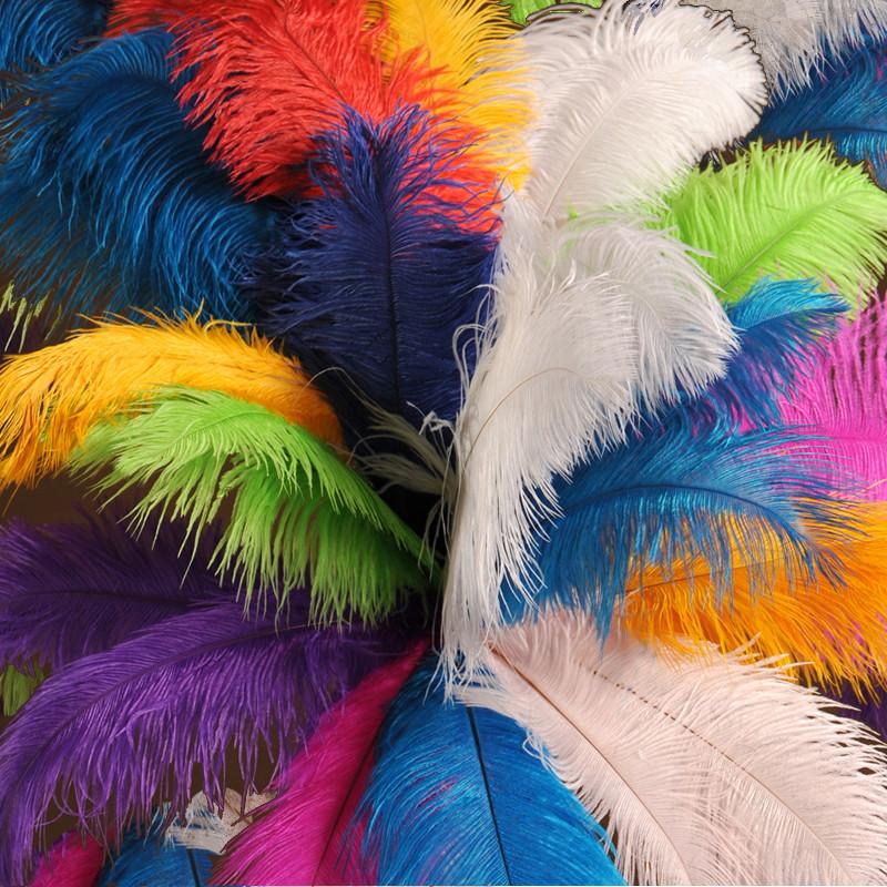 Half pound inch ostrich feathers