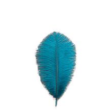 Half Pound 9-13 Inch Ostrich Drabs (200 feathers)